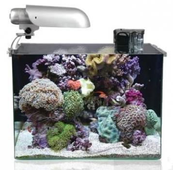 Meerwasser aquaristik shop easyriff aquatic nature for Meerwasser aquaristik shop