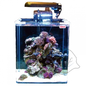 Wave Box Cubo 30 Marine